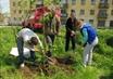 Горожанин Копейска предложил властям Челябинска провести «зеленую рево ...