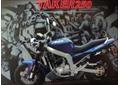 мотоциклы и мопеды PATRON продаются в магазине АИСТ СПОРТ