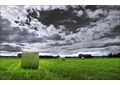 Продам участок 5,7 га в Новотроицком сельском поселении Омского района Омской области